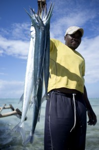 pble fish2